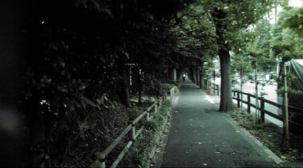 tokyo201136.jpg