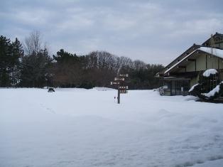 本日の様子20120206