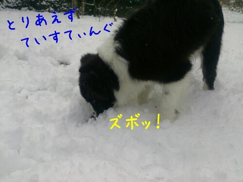 fc2_2014-01-12_00-32-08-644.jpg