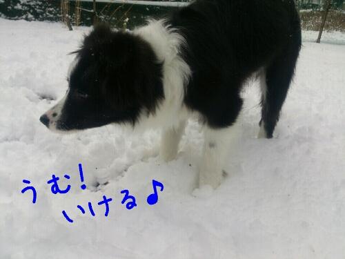 fc2_2014-01-12_00-33-02-433.jpg