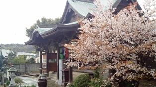 齋田寺の本堂