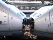 TGV6.png