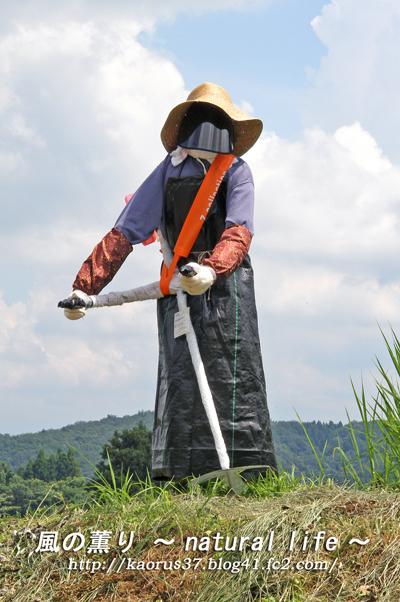 かかしコンテスト・草刈り・ブログup