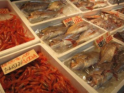 魚 008