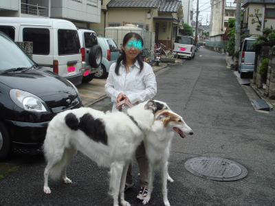 DSC00959+blog_convert_20110620094004.jpg