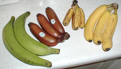 いろんなバナナ