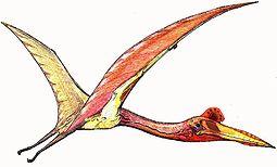255px-Quetzalcoatlus07.jpg