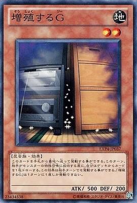 EXP4-JP037_300.jpg