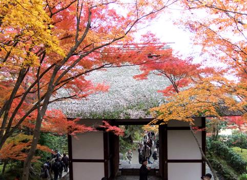 京都にて1
