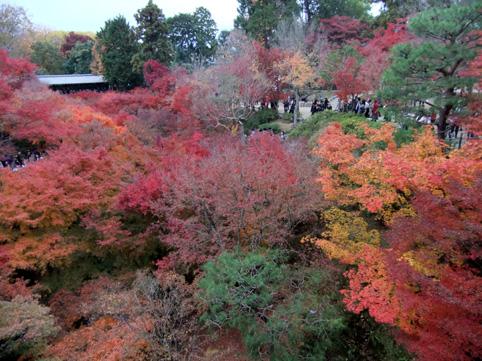京都にて3
