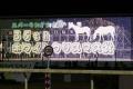 131220川崎12Rホワイトクリスマス賞-02 ビジョン