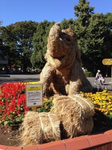 秋の上野公園3
