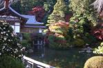 記念館の池は紅葉