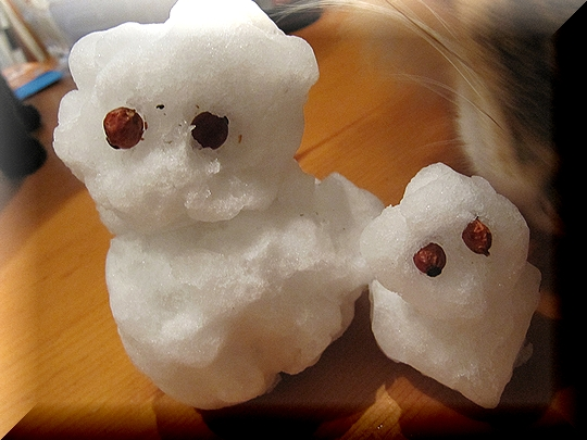 雪.jpg