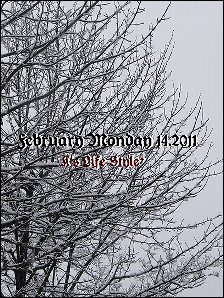 2月14日バレンタイン大雪