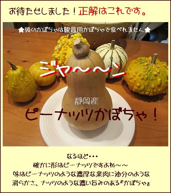 ピーナッツかぼちゃ.jpg