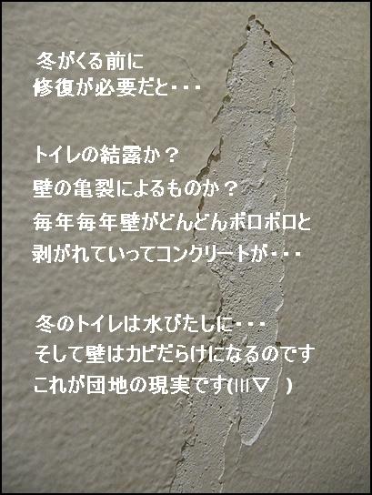 トイレの壁.jpg