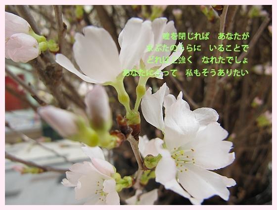レミオ2.jpg