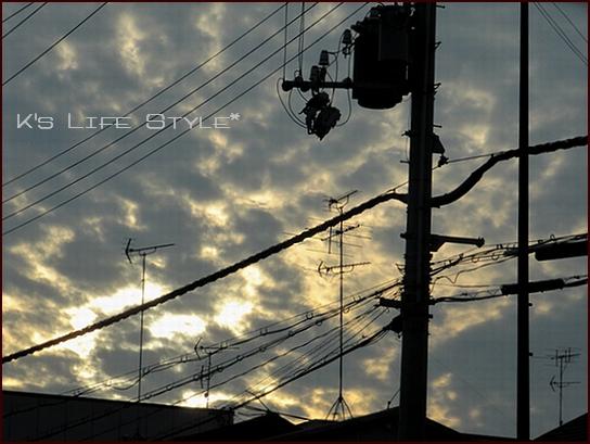 電線の魅力.jpg