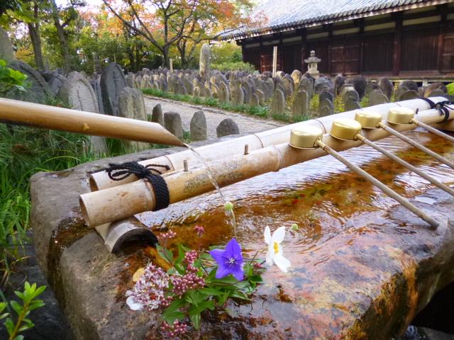 久しぶりに奈良のお寺に来ました