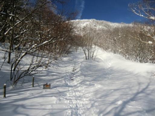 階段も雪に埋もれた