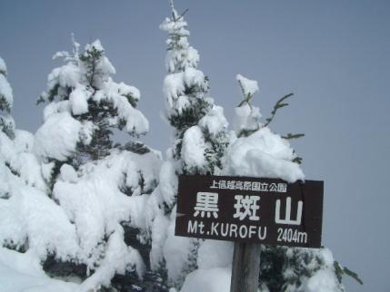 山頂に着くころにはすっかりガスってしまった