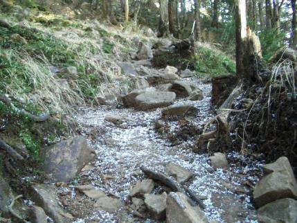 あられの残る熊沢山への道