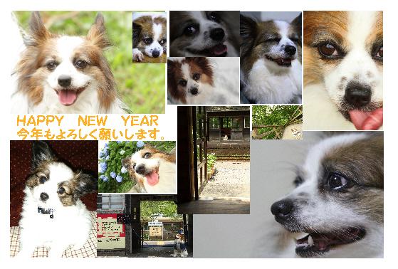 犬年賀状2014
