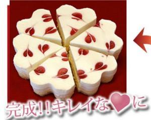 神戸ライフ:ダブルチーズケーキ 2
