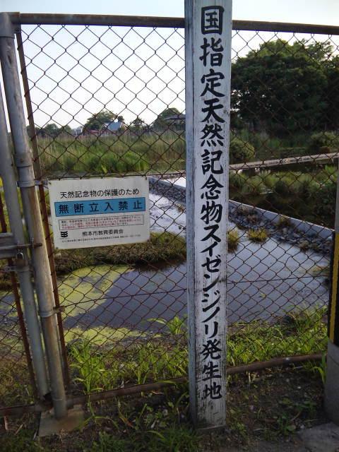 201106ezuko (6)