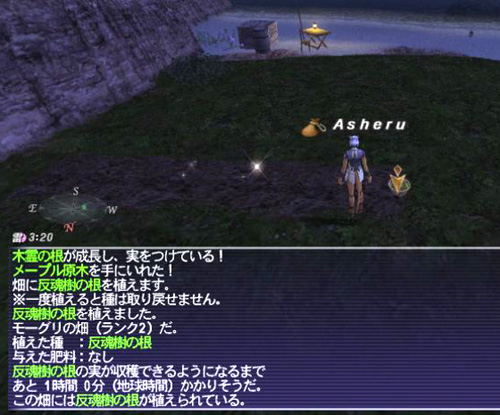 SS0298_20131210152240af3.jpg