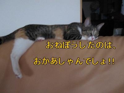 ビロ^ン2