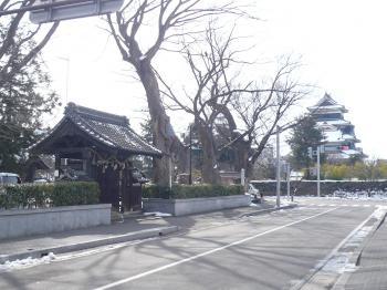 松本城と松本神社