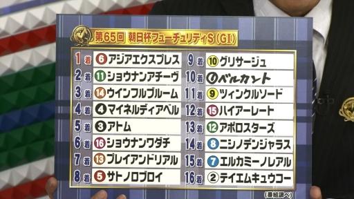 result2013asahi_Fuji02.jpg