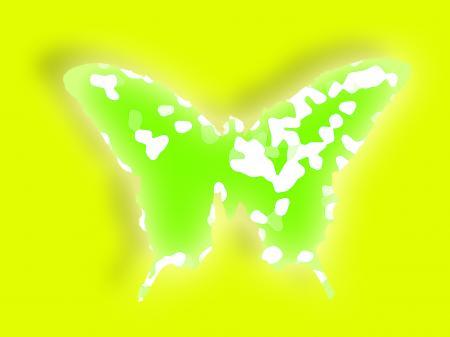 butterfly+green_01_convert_20111221231352.jpg