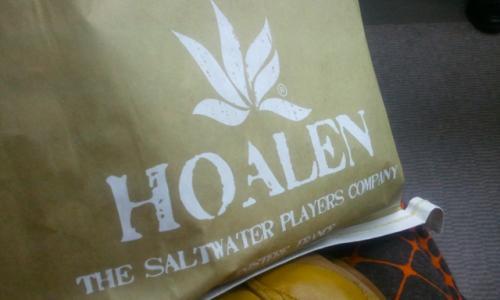 hoalen_01_convert_20111210211534.jpg