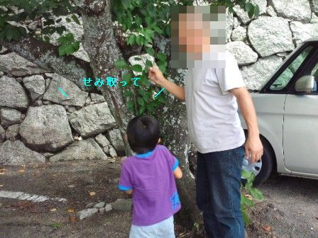 NEC_1054_20110907200126.jpg