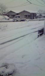 アマクサの大雪