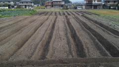 畝建て直し後