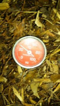 温度28度