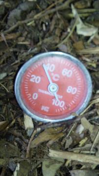温度計3?