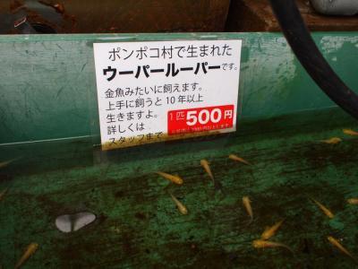 2011_0509繝昴Φ繝昴さ譚・050_convert_20110517122739