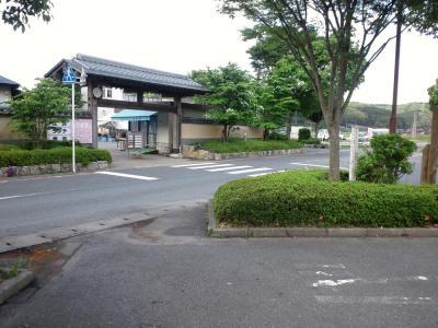 2011_0526繧ー繝ェ繝シ繝ウ繧ォ繝シ繝・Φ0014_convert_20110528003948