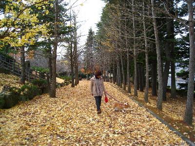 ケティ久美公園歩いて