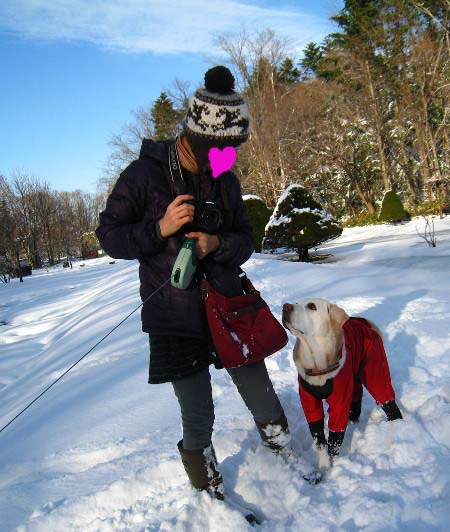 雪アン&2012