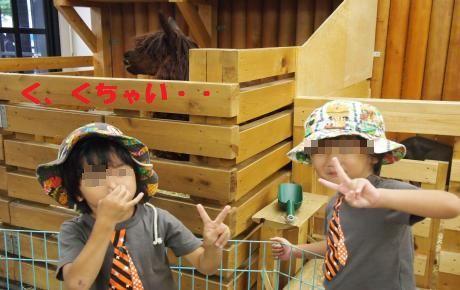 082_convert_20111005203651[1]