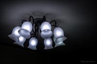 ライトルーム01-0348