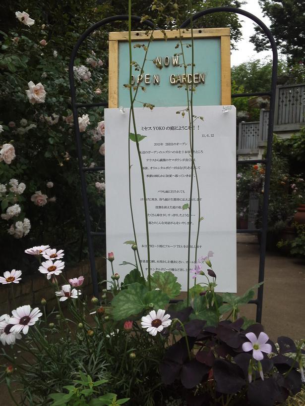 ミセスYOKOの庭 (92)