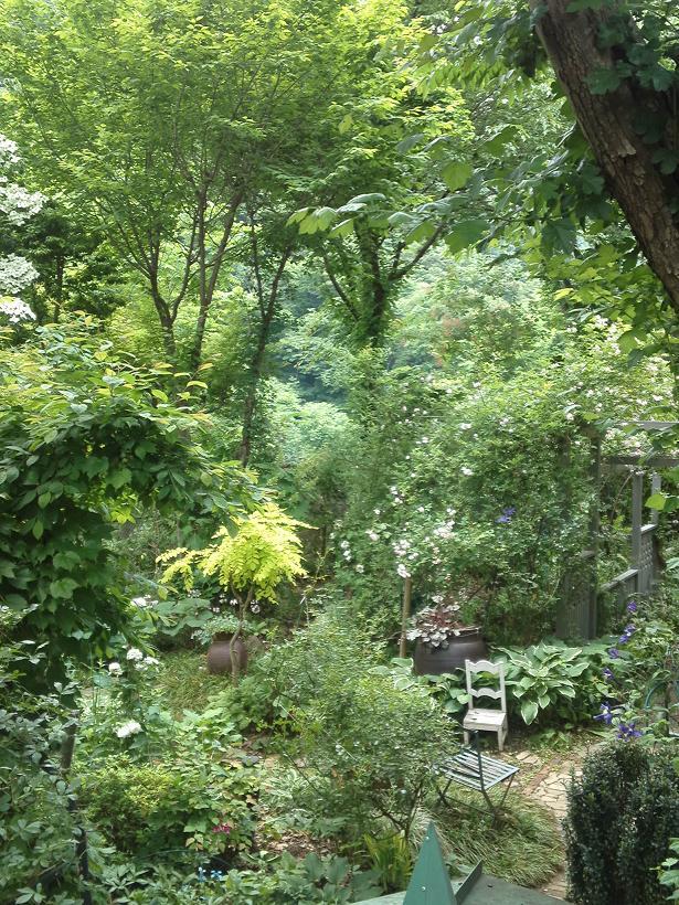 ミセスYOKOの庭 (80)