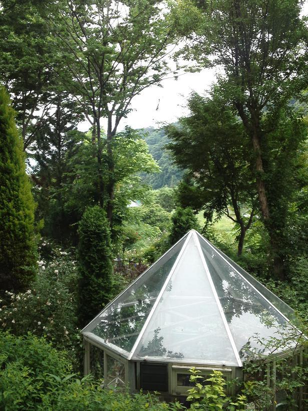 ミセスYOKOの庭 (13)